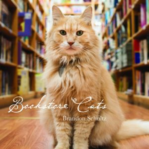 Bookstore Cats front cover