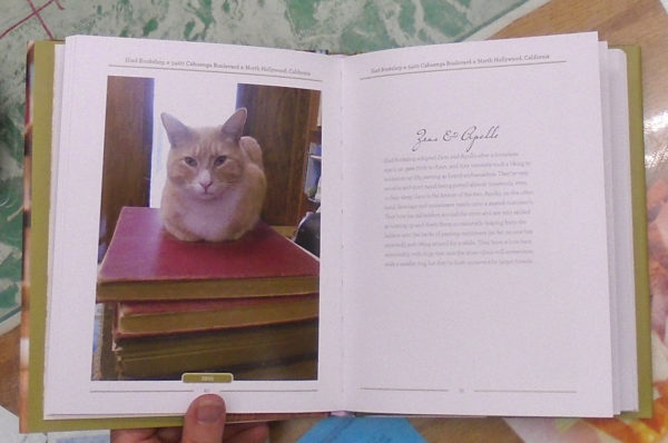 Apollos page in Bookstore Cats