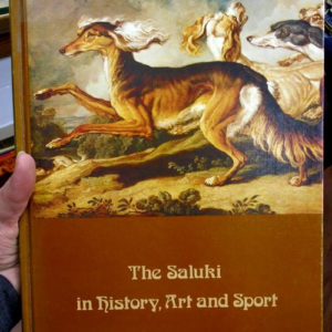 The Saluki front cover